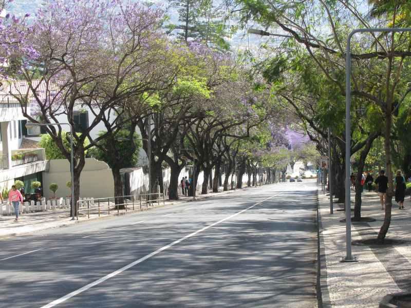 Parque Santa Catarina.