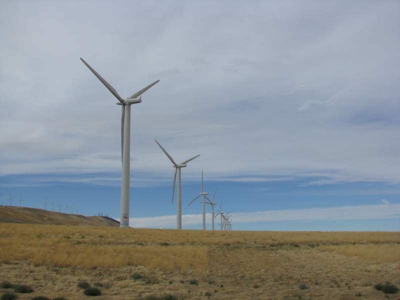 some of the many electrical generating windmills