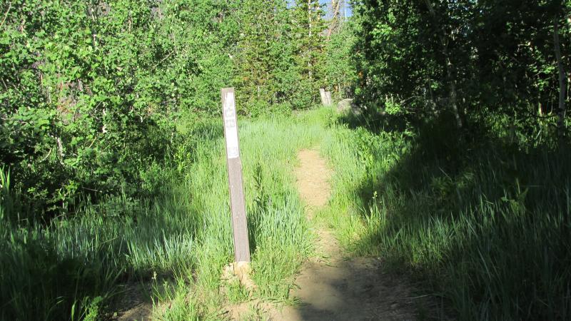 Trail Head near Campsite 19