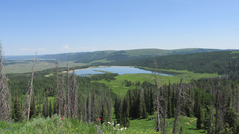 Oh What A View - Above Fairview Lakes cache
